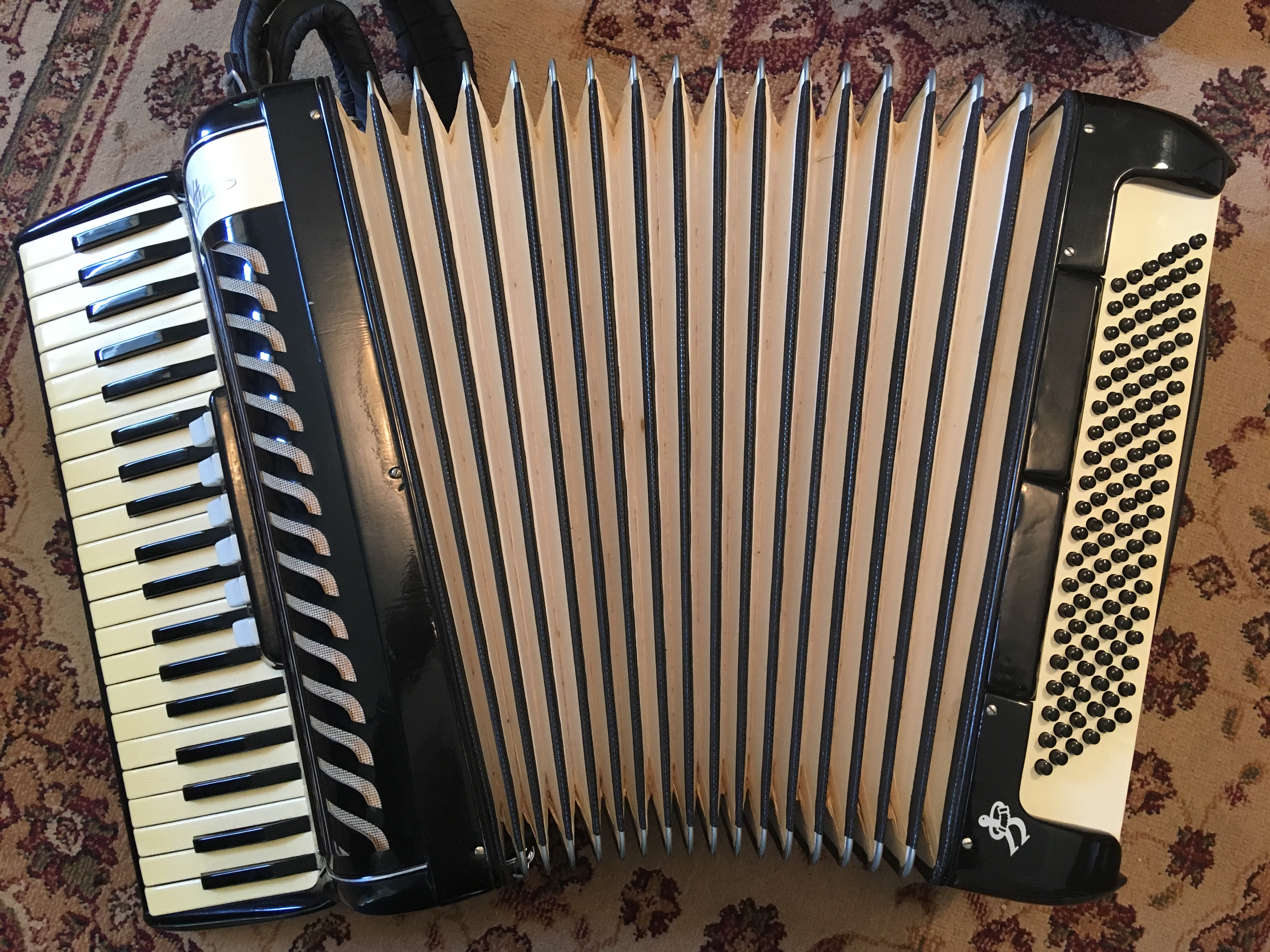 accordions for sale the accordion place. Black Bedroom Furniture Sets. Home Design Ideas